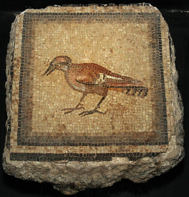 Ohio university returns Zeugma mosaics to Turkey
