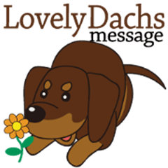 Lovely Dachs message [animation]