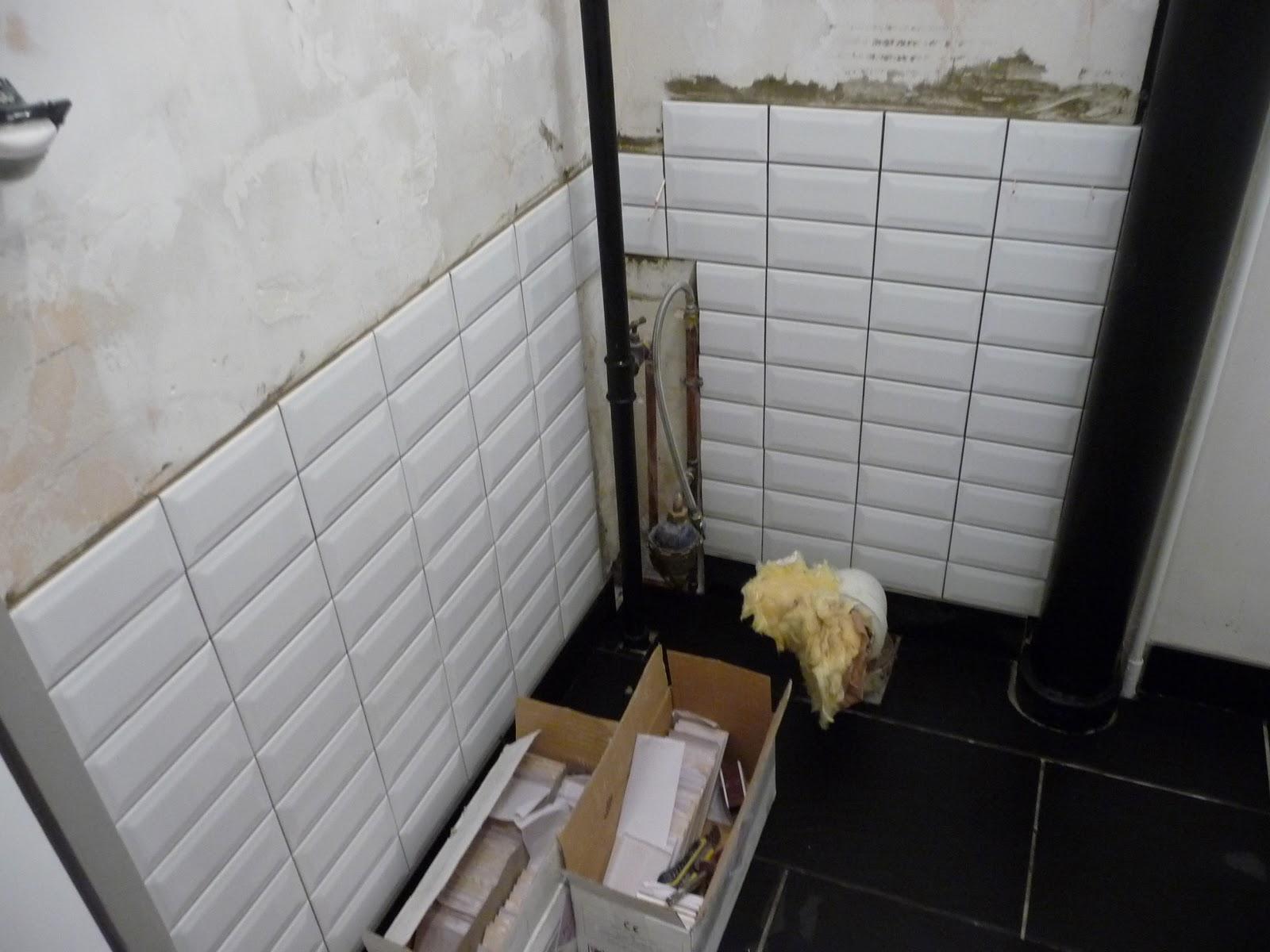 R novation d 39 un appartement le carrelage mural des toilettes Carrelage mural pour wc