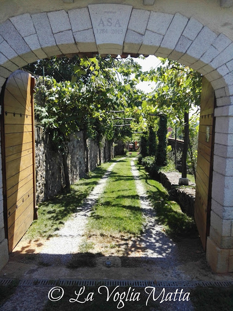 ASA Residence -  Utovlje (Slovenia)