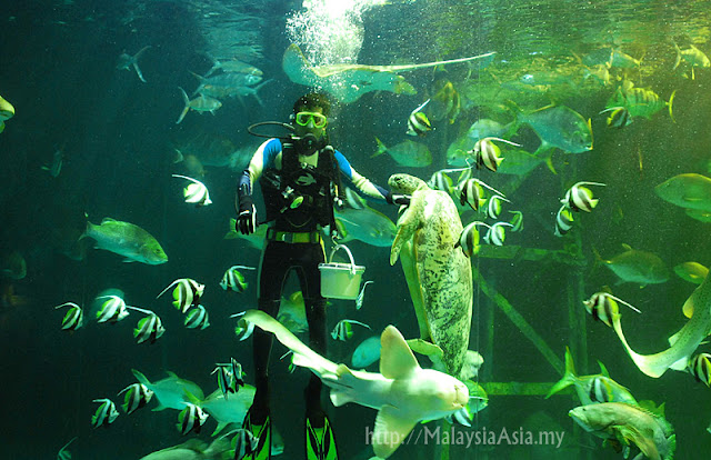 Aquarium in Songkhla
