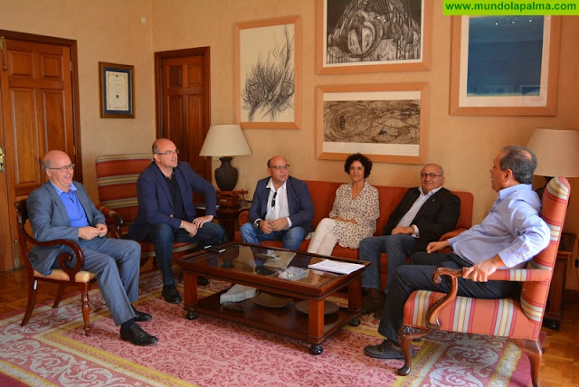 Cabildo de La Palma y Gobierno de Canarias abordan  las necesidades de la isla en materia de justicia e igualdad