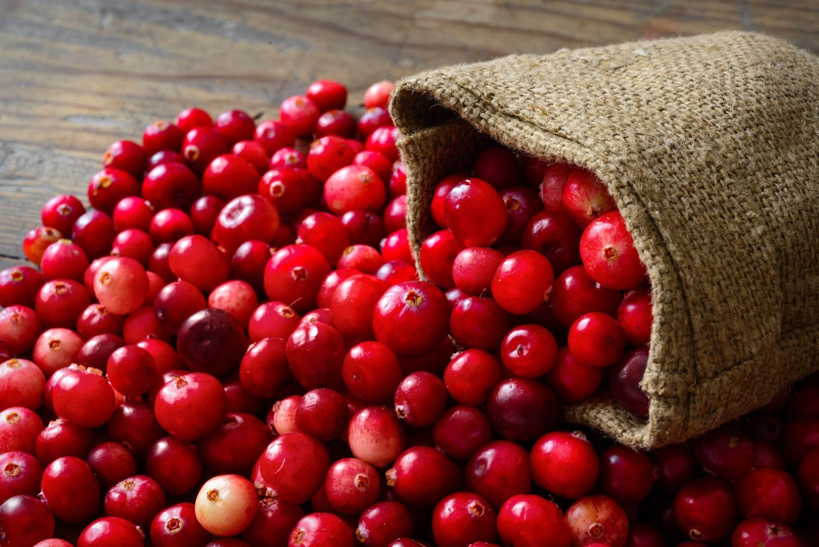 Cranberries for urinary tract health