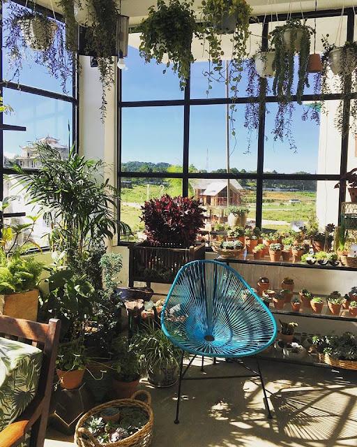 THONGDALAT.space: quán café vườn ươm xanh mát tại Đà Lạt