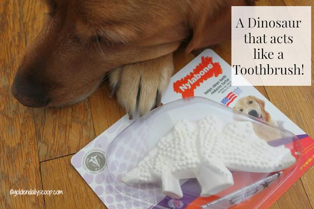 top dog toys that help clean their teeth #petdentalhealthmonth