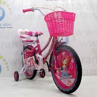16 emerson ctb sepeda anak