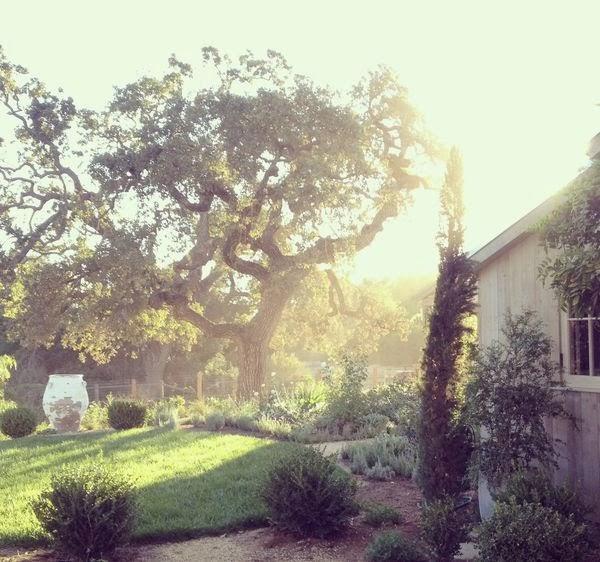 gardens-decor-interiors