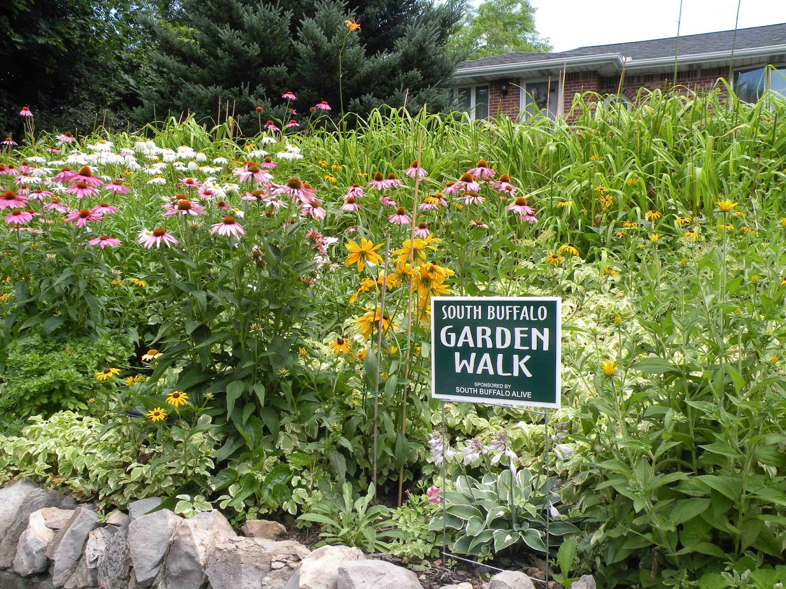 Buffalo Garden Walk: Buffalo Healthy Living News: South Buffalo Alive Garden