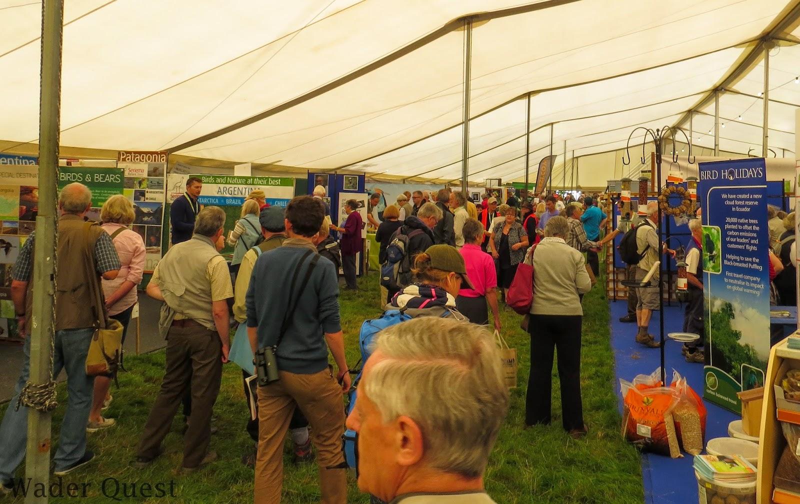 Wader Quest: Fantastic Bird Fair Weekend