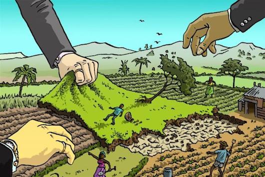 Di Indonesia 0,2 Persen Penduduk Kuasasi 74 Persen Tanah, Grup Sinar Mas Kuasai 5 Juta Hektar, Komnas HAM: Ini Distribusi Lahan Paling Ekstrim Sedunia