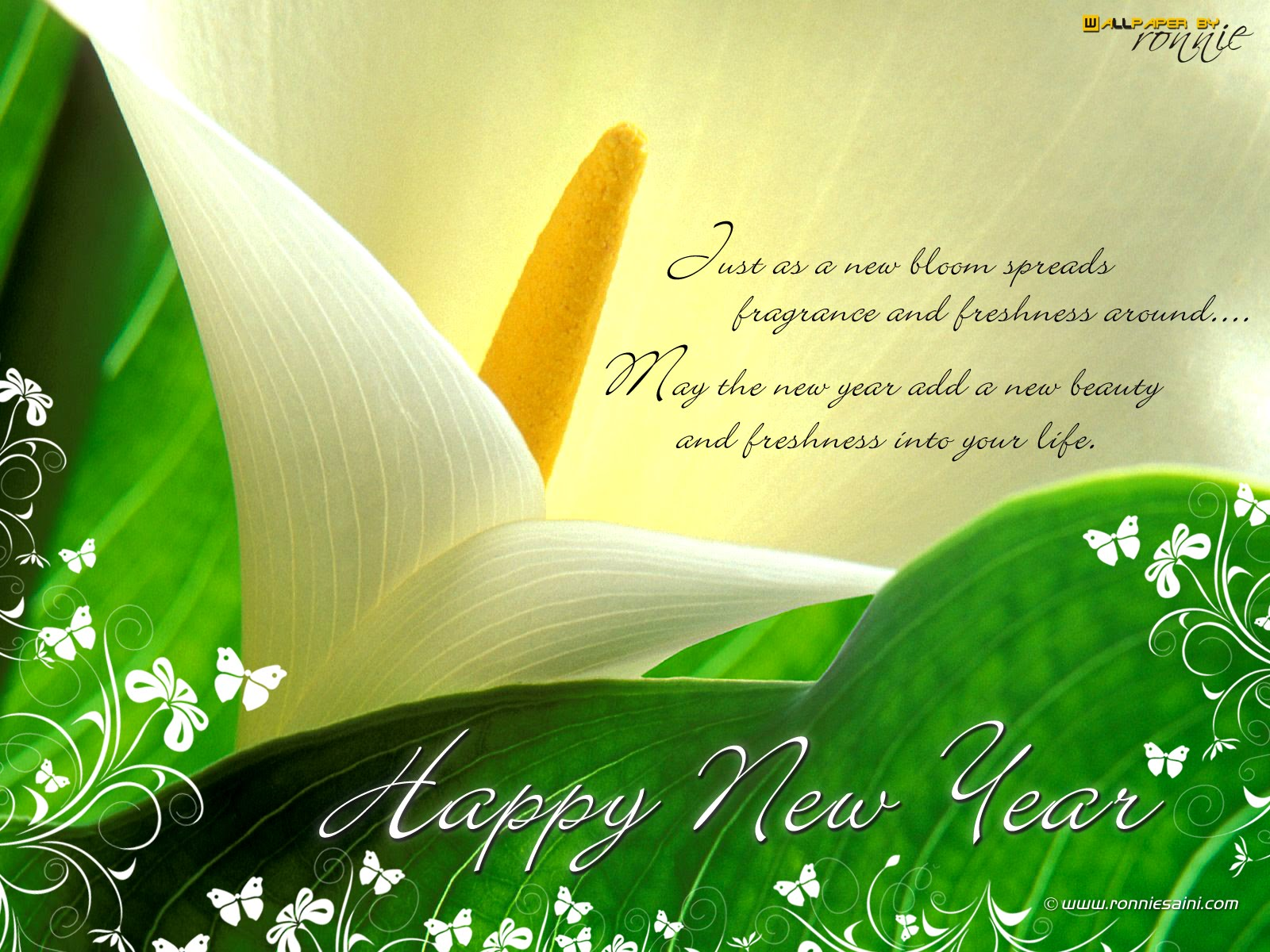 Click on Image to enlarge it. 1600 x 1200.Free Happy New Year Greeting Message