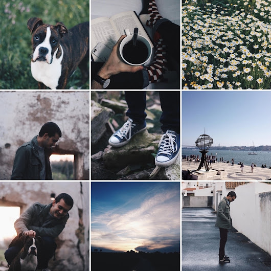 #Cats&Tips: How to have a instagram theme - Cats and Ties