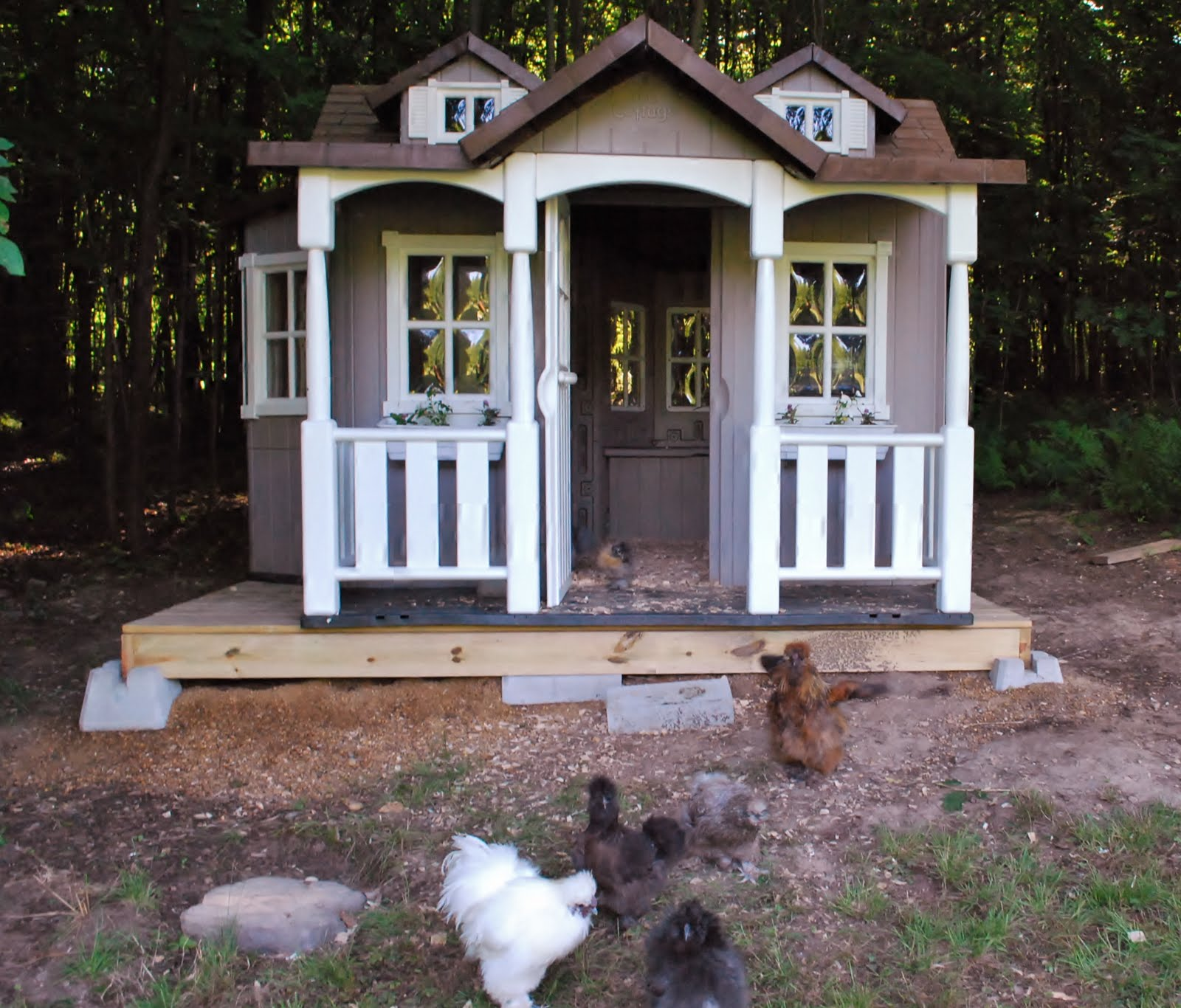 Silkie Manor A New Goose House Murano Chicken Farm