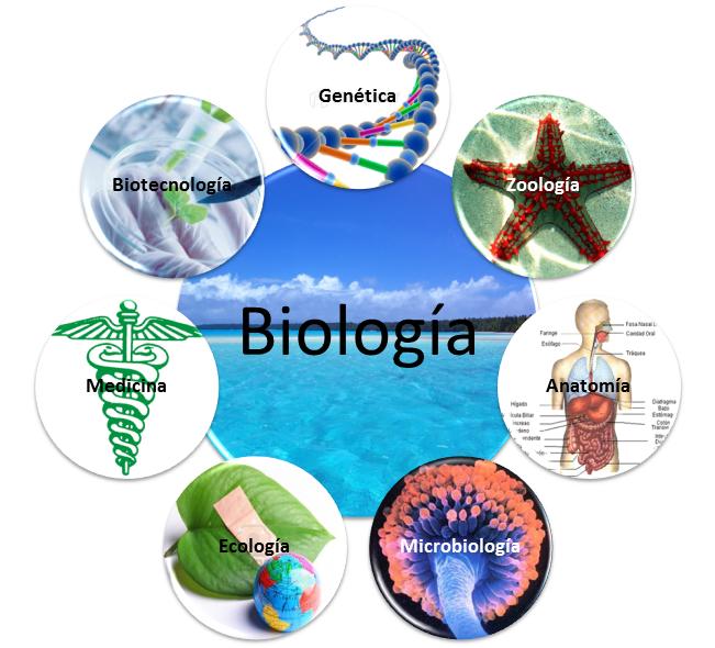 Biologia, Ciência que Estuda a Vida