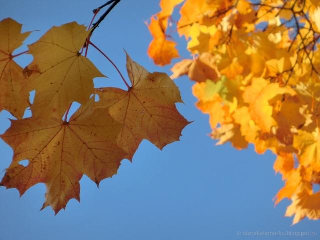 осень, подарок, подарок рукодельнице