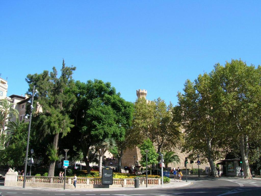 Toyota San Francisco >> full picture: Palma de Mallorca Spain