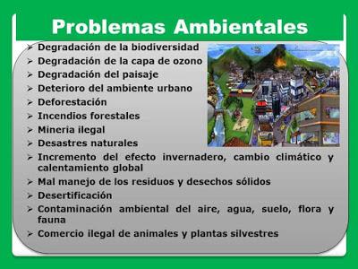causas y consecuencias de los problemas ambientales