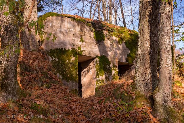 Abris installés à contrepente sur la crête menant au château du Schwarzenbourg