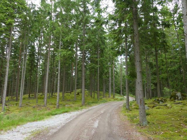 Vildmarkscamping Hätteboda Schweden Smaland Reise Urlaub Camping mit Hund