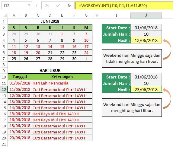 Cara Menggunakan Fungsi Excel WORKDAY.INTL