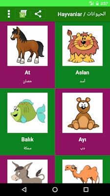 تعلم الكلمات التركية بالعربية بالصور