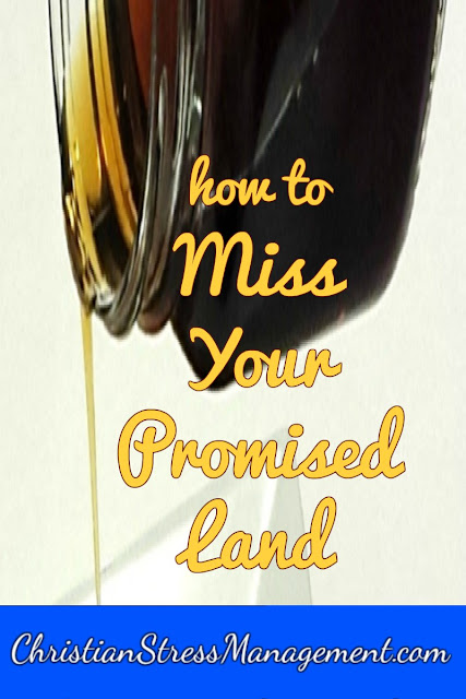 How to Miss Your Promised Land