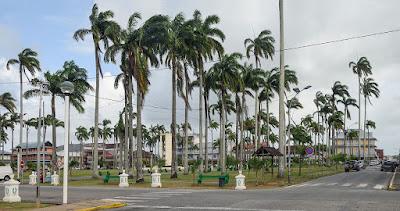Place entourée de palmiers à Cayenne