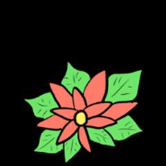 Flower language!