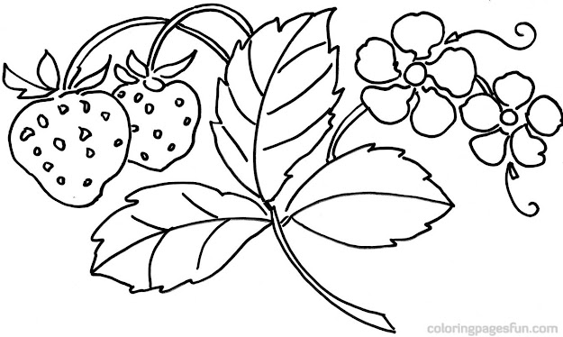 Best Flower Coloring Sheets With Flowers Pages