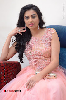 Actress Neha Hinge Stills in Pink Long Dress at Srivalli Teaser Launch  0054.JPG
