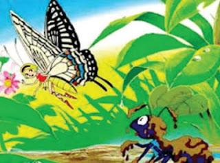 kupu kupu berhati mulia