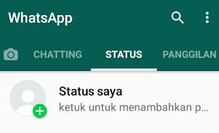 Kenapa Whatsapp Tidak Bisa Melihat Status Video