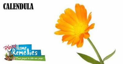 Home Remedies For Black Eye: Calendula
