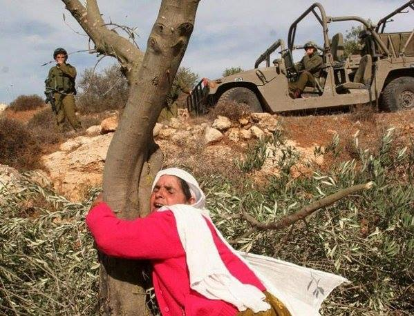 http://3.bp.blogspot.com/-GH0XQXHvh64/Vqg32R8ntvI/AAAAAAAABsY/1_UILTLFaOM/s640/palestina2.jpg