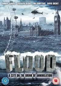 Flood 2007 DVDRip Dual Audio [Eng-Hindi] 300mb