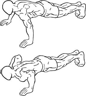 push up untuk membentuk otot dada, triceps dan deltoid