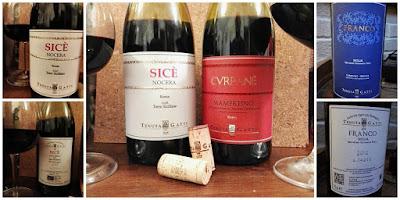 vini siciliani tenuta gatti