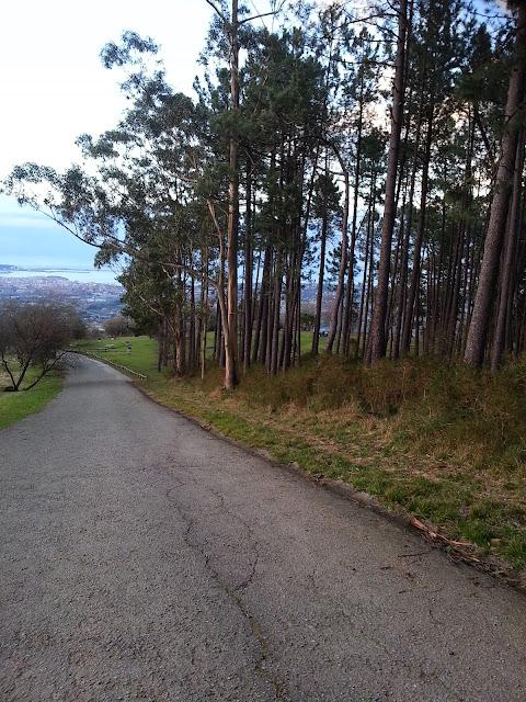 camino de tierra en monte Deva