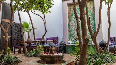 Imágenes inspiradoras de patios y jardines en Marrakech