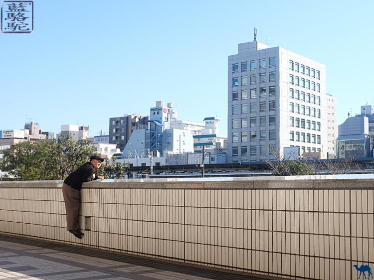 Le Chameau bleu - Blog Voyage Japon - Voyage à Tokyo - Japonais  en quête de sumo