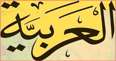 تطبيق لغة عربية كامل ومجاب للمرحلة الاعدادية 2017