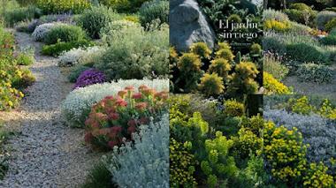 El jardín sin riego (jardín seco). Un libro, para empezar