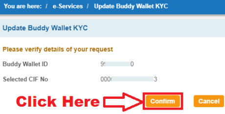 how to upgrade sbi buddy wallet through internet banking