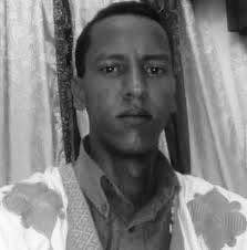 Mauritanian blogger jailed