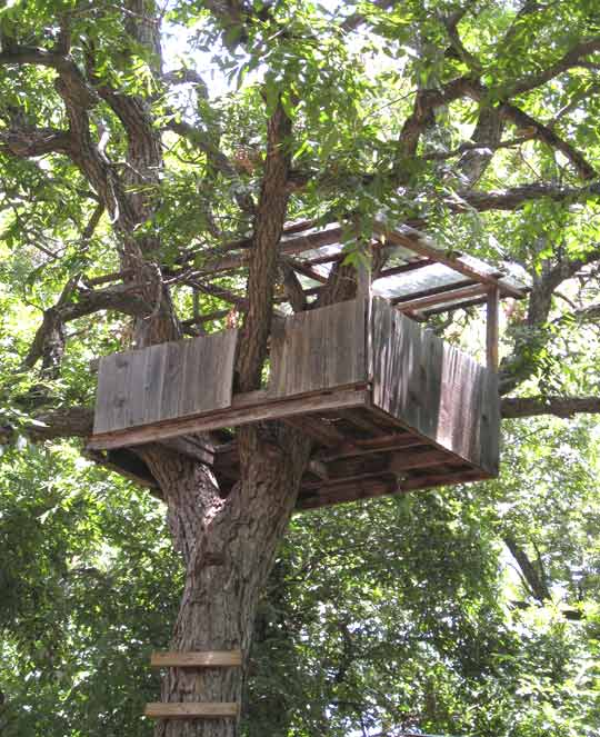 Easy To Build Treehouse: Gypsy River