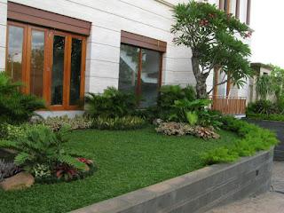 Galeri Taman - Tukang Taman Surabaya 45