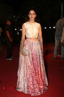 Actress Lavanya Tripati Stills in Beautiful Dress at Gemini TV Puraskaralu 2016 Event  0092.JPG