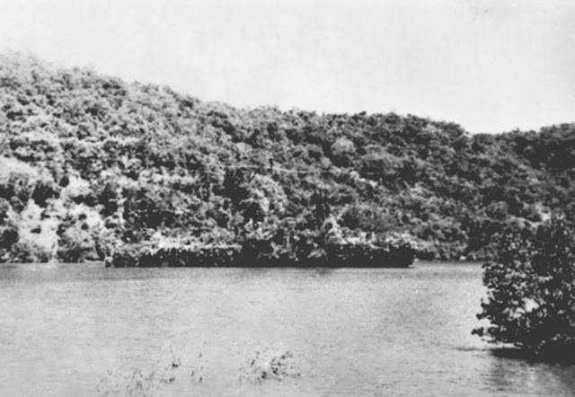 HNLMS Abraham Crijnssen blending with the environment. 1942.