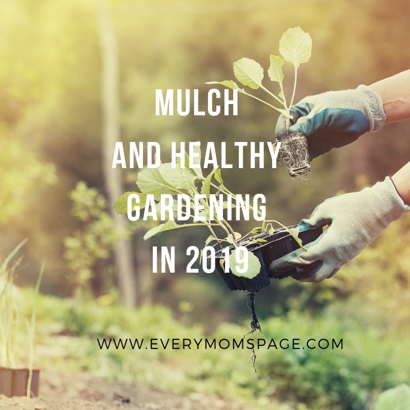 Mulch And Healthy Gardening In 2019