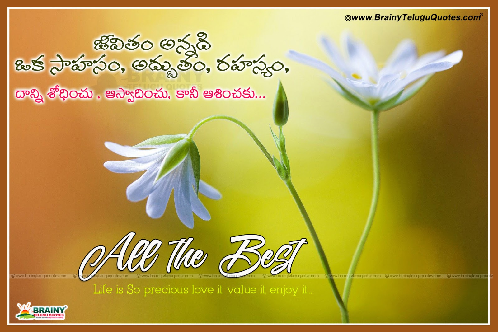 Inspiring Motivational Quotes For Life With All The Best Telugu